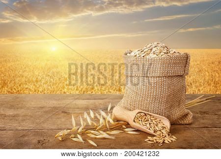oatmeal in bag, scoop with oat grains, ears of oats on wooden table with field on the background. Golden field on sunset. Uncooked porridge