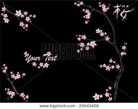 Sakura on black