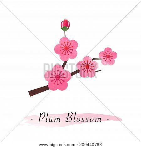 Colorful Watercolor Texture Vector Botanic Garden Flower Pink Plum Blossom