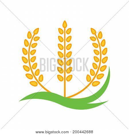 Wheat barley spike yellow isolated on white background. Grain plant silhouette. Spica icon. Ear organic. Vector illustration flat design. Cereals natural. Maybe as a logo.