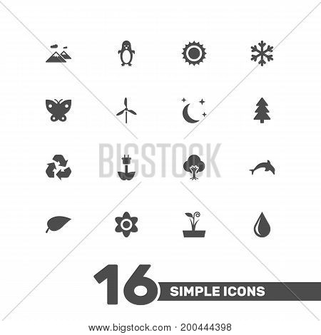 Collection Of Spruce, Bloom, Blob And Other Elements.  Set Of 16 Ecology Icons Set.