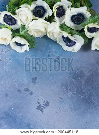 Fresh white Anemones flowers border with copy space on gray stone background