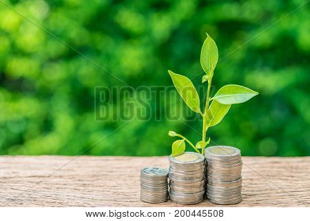 Stack of coins with growth sprout plant as business finance or grow investment concept.