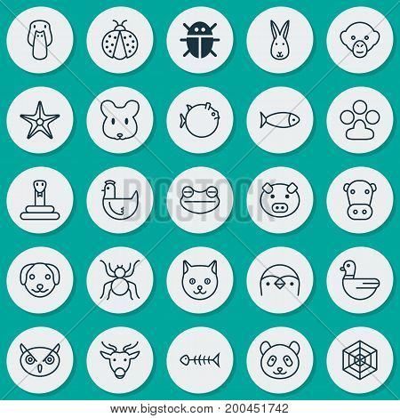 Nature Icons Set. Collection Of Kitten, Moose, Claw Print And Other Elements