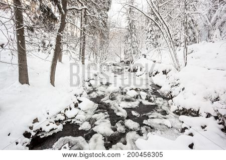 an flowing river in the valley of the forest