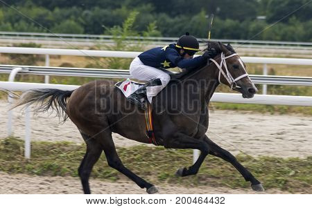 PYATIGORSK,RUSSIA - AUGUST 20,2017: Horse race for the traditional prize in honor of the flag day - the oldest and the largest racecourses in Russia.Master jockey Myrzabek Kappushev-one of the best jockeys of Russia on August 20,2017.