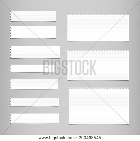 White ruled, lined note, copybook, notebook paper strips stuck on grey background