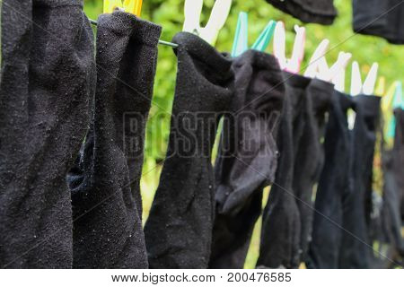 Washing line with black socks in a garden