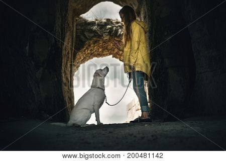 young labrador retriever dog puppy and young girl - dog school in cave