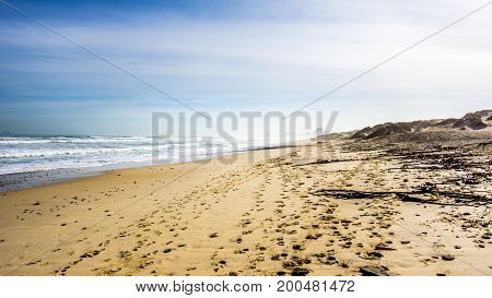 The beautiful beach and dunes of Bloubergstrand on the Atlantic side of the Western Cape just north of the city of Cape Town under blue sky