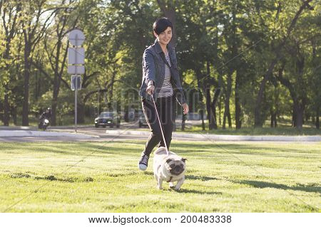 Young woman having good time with pug on the green grass, pretty girl with dog walk in the park during sunset or sunrise