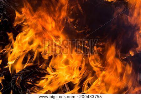Blaze fire flame close up texture background