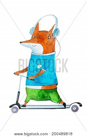 Hand-drawn aquarelle illustration of stylish cartoon fox on scooter wearing bright t-shirt and trousers listening to music in headphones.