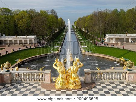 SAINT PETERSBURG RUSSIA - MAY 23 2017: Scenic view of the Grand Cascade The Peterhof Palace and Gardens complex is recognized as a UNESCO World Heritage Site