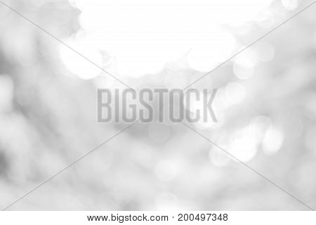 white blurred backdrop of nature, circle white wallpaper, gray bokeh background