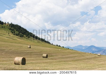 A harvested field with scattered large round hay bales on the hillside. Blue mountains and cloudy sky are above.