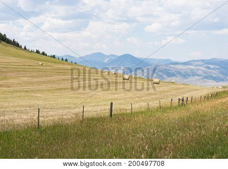 A harvested field with scattered large round hay bales on the hillside. Blue mountains and cloudy sky are above and a barbed wire fence in the foreground.