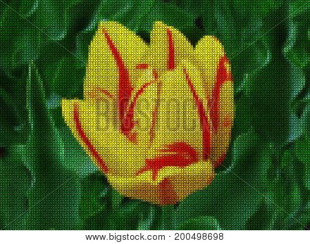 Illustrations. Cross-stitch. Yellow tulip flower on a green background of sheets.