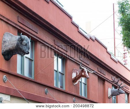 Mounted animal heads on the outside of a building