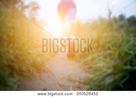Blurred photo of sporty woman walking along path in forest at morning, lensflare