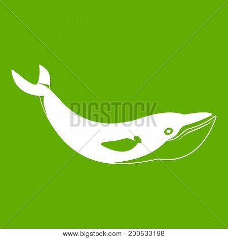 Whale icon white isolated on green background. Vector illustration