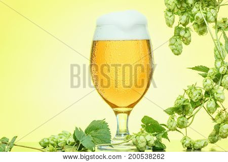Octoberfest beer glass with hops on yellow background copyspace.