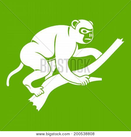 Monkey is climbing up on a tree icon white isolated on green background. Vector illustration