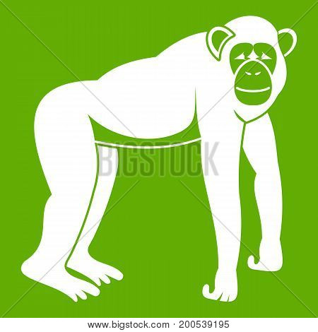 Chimpanzee icon white isolated on green background. Vector illustration