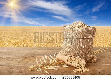 oatmeal in bag, scoop with oat grains, ears of oats on wooden table with field on the background. Ripe field, blue sky with beautiful clouds and sun. Uncooked porridge