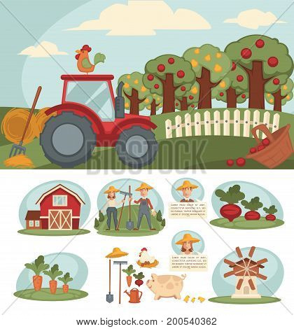 Farm with big orchard, red tractor, small haystacks, pink big, hen with eggs, friendly farmers couple, old mill, spacious barn, equipment for work on ground and sweet beet vector illustration.