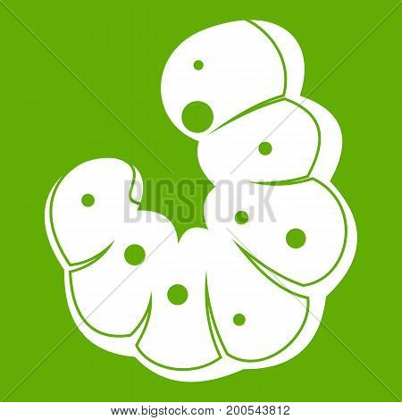 Worm icon white isolated on green background. Vector illustration