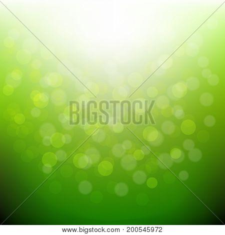 Green Nature Bokeh