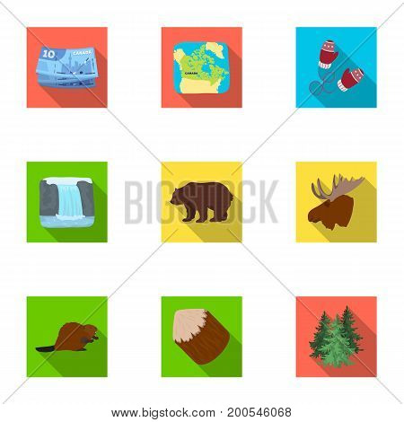 Wild animal, deer, horns and other Canada elements. Canada set collection icons in flat style vector symbol stock illustration.