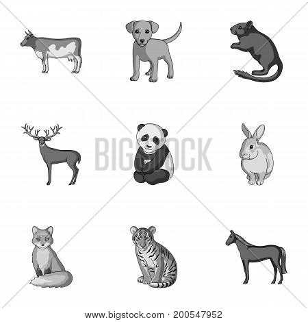 Deer, tiger, cow, cat, rooster, owl and other animal species.Animals set collection icons in outline style vector symbol stock illustration .
