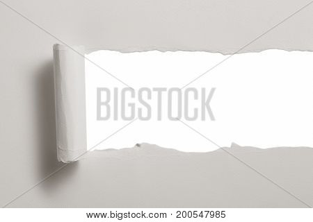 Blank Ragged Paper Texture