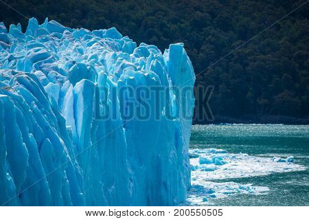 A blue glacier against the background of a forest on the shore of the water. The blue glacier rises above the water. The wreckage of the glacier floats on the surface of the water. The uneven surface of the glacier shines in the sunlight.