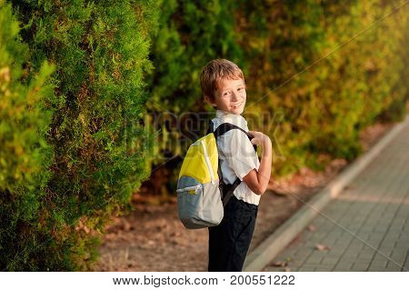 Little schoolboy comes back from school in good mood. The boy goes on a footpath. He has raised eyes to the sky and smiles. Behind shoulders at the pupil a satchel.