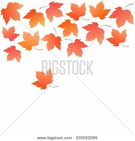 Border from falling maple leaves. Autumn decoration