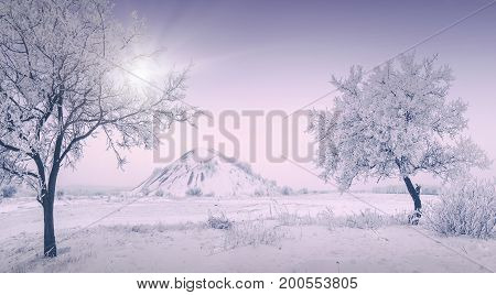 Cold Winter Morning_3