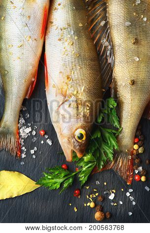 Fresh fish with aromatic herbs, spices, salt. Raw perch fish on slate tray dark vintage background, top view, healthy food, cooking, diet, nutrition concept. Vertical Photo