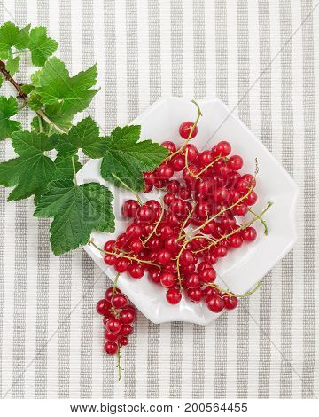 Redcurrants On Plate Over Striped Textile Background
