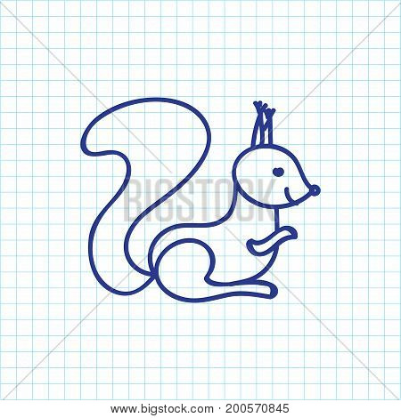 Vector Illustration Of Zoology Symbol On Squirrel Doodle