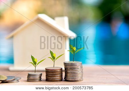 Money coin stack growing graph. Saving money for house. Investment Concept.