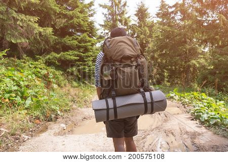 Man tourist walking on a forest mountain path. sun-light.