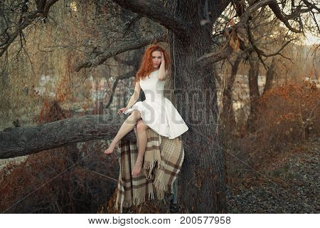 Young Girl Is Sitting On A Tree In A Forest