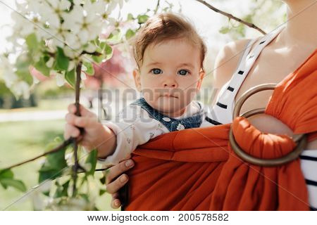 Unrecognizable Young Mother With Her Infant Baby In Sling