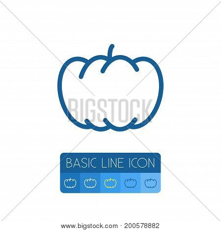 Pumpkin Vector Element Can Be Used For Gourd, Pumpkin, Squash Design Concept.  Isolated Gourd Outline.
