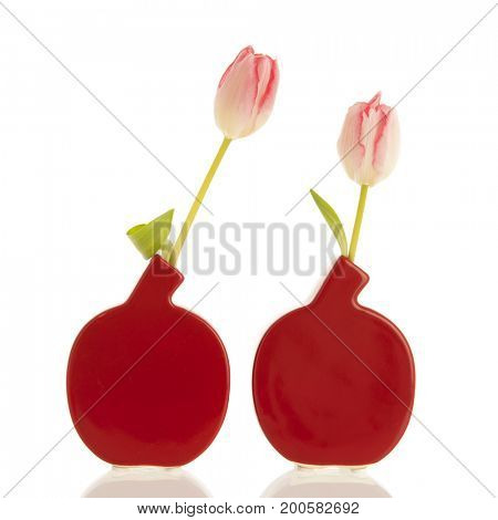 Two modern vases with pink tulips isolated over white background