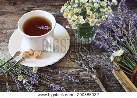 Summer mood: Аromatic lavender tea fresh lavander and wild chamomile rustic style on old wooden background