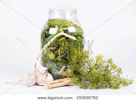 Brined pickles in a jar, with all the ingredients for making them (garlic, dill and horseradish)